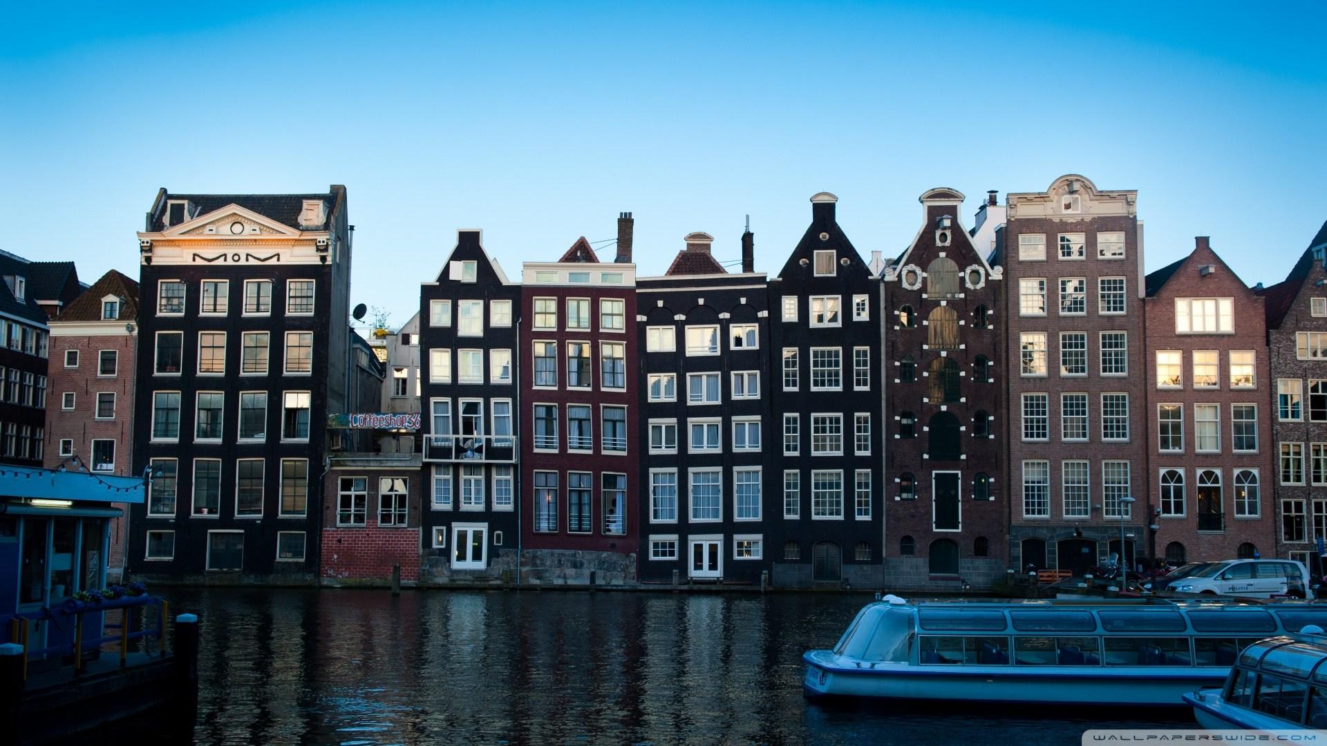 web design company in amsterdam