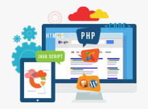 customized web development